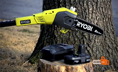 Best Pole Saw Reviews for 2020